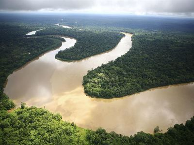Cruise Down The Amazon