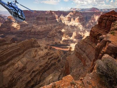 Gaze At The Grand Canyon