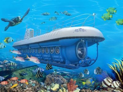 Savour A Submarine Tour