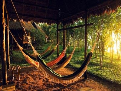 Sleep In A Hammock In The Jungle