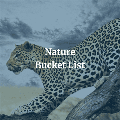 Nature Bucket List