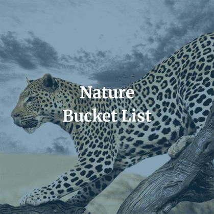 Nature Bucket List